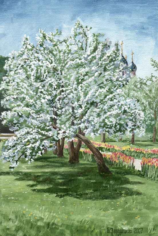 Яблоня в Коломенском. Холст, масло. 19х29 см. 2007 г.