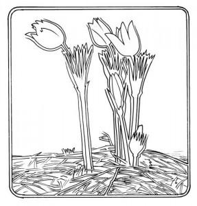 """Логотип Благотворительного Фонда """"Семья и Детство"""""""